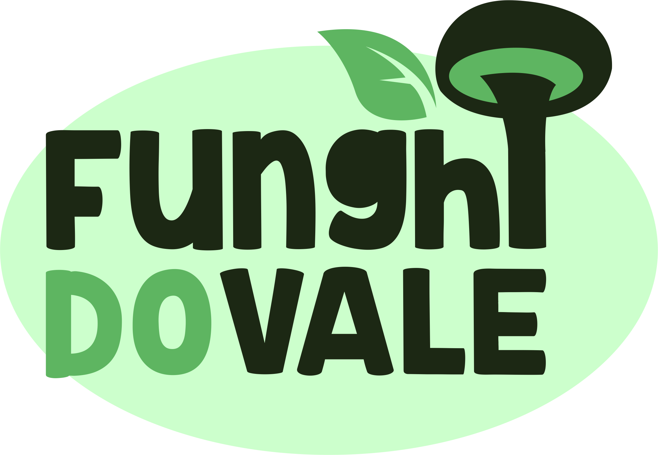 Funghi do Vale